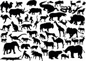 illustration with animals silhouettes collection isolated on white background