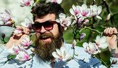 Hipster In Fashionable Sunglasses Cheerfully Posing With Magnolia Branches On Background. Man With B poster