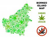 Royalty Free Cannabis Borneo Island Map Composition Of Weed Leaves. Template For Narcotic Addiction  poster