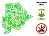 Royalty Free Cannabis Botswana Map Collage Of Weed Leaves. Template For Narcotic Addiction Campaign  poster