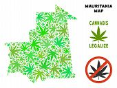 Royalty Free Cannabis Mauritania Map Composition Of Weed Leaves. Template For Narcotic Addiction Cam poster