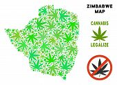 Royalty Free Cannabis Zimbabwe Map Collage Of Weed Leaves. Template For Narcotic Addiction Campaign  poster