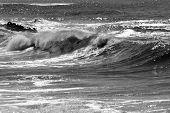 Wave 1006 Bw