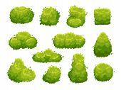 Garden Bush. Green Garden Vegetation Bushes Icon. Cartoon Shrubs For Outdoor Decorate Landscape Park poster