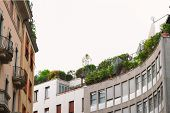 Roof Terrace With Greenery And Solar Panels. Green City, Eco Energy Consumption poster