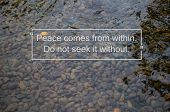 Meditation Brings Wisdom. Peace Come From Within Buddhist Quote On Clear Water Flow Over Stones In R poster