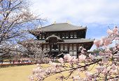 Todaiji Temple (Great Eastern Temple), one of the powerful Seven Great Temple, Nara, Japan. UNESCO w poster