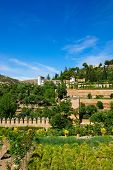 Generalife palace, Granada, Spain
