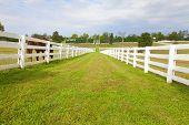 Pferdehof mit weißem Holz Zäune
