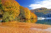Colors Of Autumn By Lake Balkana