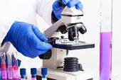 stock photo of microbiology  - Lab technician working with equipment - JPG