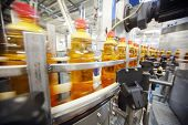 Yellow plastic bottles with light beer go on conveyor belt at large brewery.