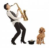 Busker Musician woman with a dog earns money playing the saxophone