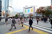 Tokyo - November 28: Crowds Of People Crossing The Center Of Shibuya In November 28 2013