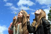 Two Girls Are Blowing On Dandelions
