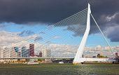 Erasma Bridge to Rotterdam Nideranda