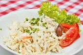 image of scallion  - Coleslaw salad with cabbage apple carrot scallion and homemade mayonnaise - JPG