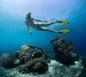 Young lady finning underwater over coral reef on a breath hold
