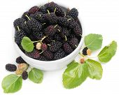 Black Mulberries With Leaves In White Bowl