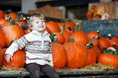 Little Boy Sitting On Pumpkin Patch