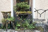 Mossy Chairs And Table
