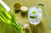Refreshing Mojito Cocktail