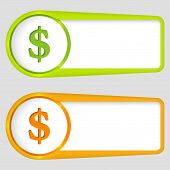 Set Of Two Boxes For Entering Text With Dollar Sign