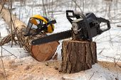Lumberjack's Equipment