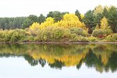 stock photo of kan  - Forest reflected in the river Kan autumn - JPG