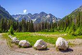 Beautiful scenery of Wlosienica meadow in Tatra mountain, Poland