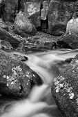 Blurred Water Detail With Rocks Nad Autumn Leaves In Padley Gorge In Peak District  Black And White