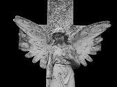 Gothic Angel isolated on black