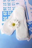 Sanitary pads, calendar and white flower on light blue background