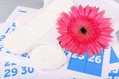 Sanitary pads and pink Gerber on blue calendar background