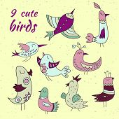 9 cute birds set