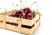 Small crate of cherries isolate