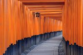 Kyoto, Japan at the Fushimi Inari Shrine gates.