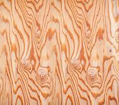 background with brown dry wood texture