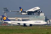 Lufthansa Airplanes At Frankfurt Airport