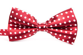 stock photo of bow tie hair  - Elegant red bow tie with white polka dots on an isolated white background - JPG