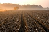 picture of plowing  - plowed field with tractor traces and distant forest at sunrise - JPG