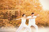 image of peaceful  - Peaceful couple in white doing yoga together in warrior position against peaceful autumn scene in forest - JPG