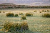 foto of arid  - Arid landscape in Zaragoza province - JPG