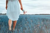stock photo of wildflower  - Woman with bouquet of red wildflowers walking on summer fantasy meadow - JPG