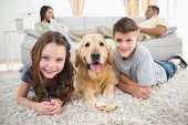 stock photo of sofa  - Portrait of happy siblings lying with dog while parents relaxing on sofa at home - JPG