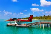 stock photo of hydroplanes  - Seaplane at Maldives  - JPG