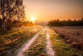 image of dirt road  - Beautiful landscape with rural sandy road at sunrise - JPG