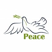 image of peace  - Flying dove with olive branch as symbol of peace in outline sketch style with caption Peace - JPG