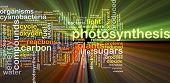 pic of photosynthesis  - Background concept wordcloud illustration of photosynthesis glowing light - JPG