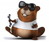 pic of muskrat  - Beaver with a white tshirt - JPG